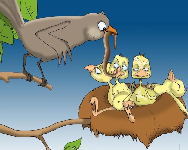 Vögel im Nest  gelangweilt