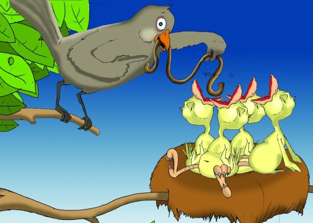 Vögel im Nest hungrig