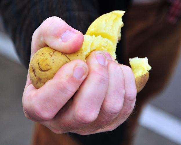 kartoffel-zerquetschen